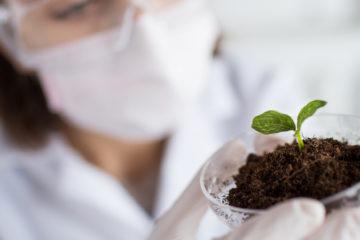 Os laboratórios Nova Flora